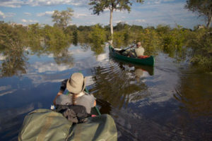 Selinda-Canoe-Trail-exploring-side-channel