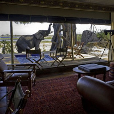 Zarafa-Guest-Tent-Lounge-With-Elephant-and-Pool-Fitness-Adventure